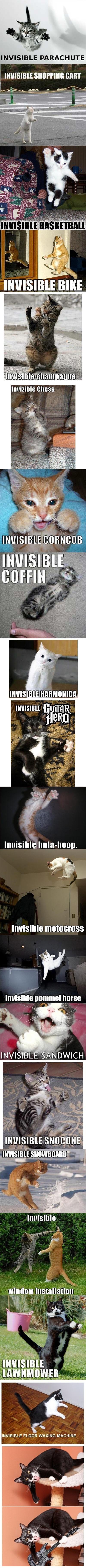 Invisible Kitty Compendium