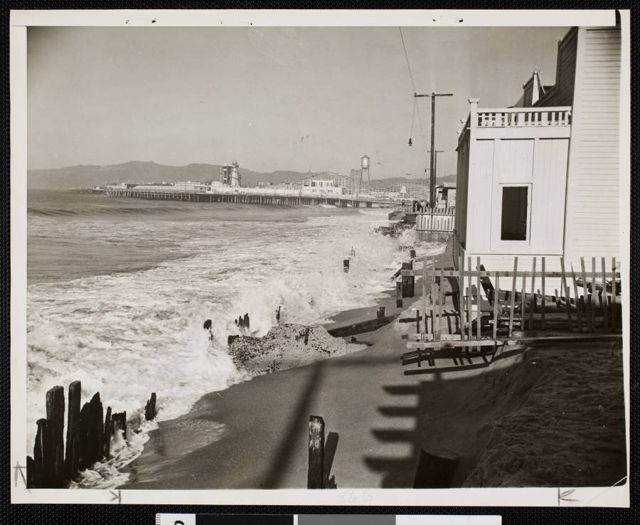 1941 - Shore line looking north from 25th avenue, Venice, showing damage to beach done by high tides
